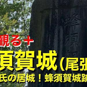 【城を観る+】《蜂須賀城(尾張国)》2020 〜蜂須賀氏の居城!蜂須賀城跡を観る〜