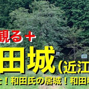 【城を観る+】《和田城(近江国)》2020 〜甲賀武士!和田氏の居城!和田城を観る〜