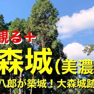 【城を観る+】《大森城(美濃国)》2020 〜奥村又八郎が築城!大森城跡を観る〜