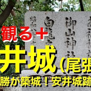 【城を観る+】《安井城(尾張国)》2020 〜浅野長勝が築城!安井城跡を観る〜