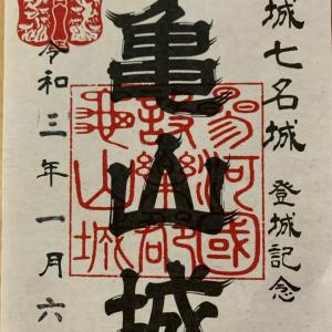 城を観る《亀山城(三河国)》