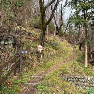 鷺山城(美濃国)〜山道〜