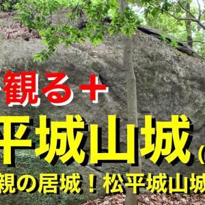【城を観る+】《松平城山城(大田城)》2021 〜松平光親の居城!松平城山城を観る〜