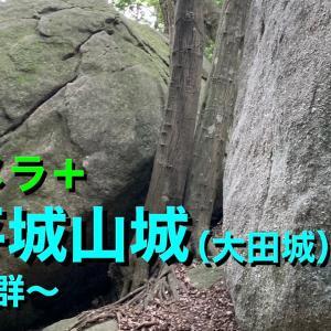 【城カメラ+】《松平城山城(大田城)》2021 〜巨石群〜