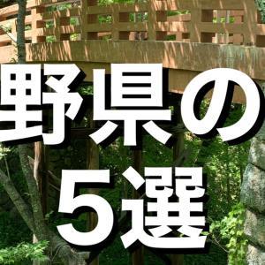 【城選+】[長野県の城]〜5選〜