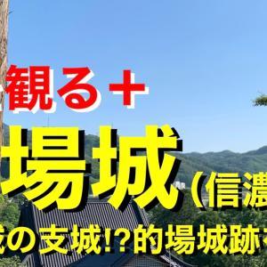 【城を観る+】《的場城(信濃国)》2021 〜高遠城の支城⁉︎的場城跡を観る〜