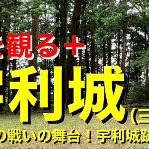 【城を観る+】《宇利城(三河国)》2021 〜宇利城の戦いの舞台!宇利城跡を観る〜