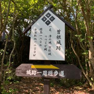 曾根城(つつじ城)〜解説板 曽根城跡 城跡一周遊歩道〜