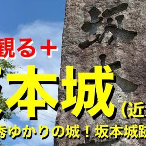 【城を観る+】《坂本城(近江国)》2020 〜明智光秀ゆかりの城!坂本城跡を観る〜