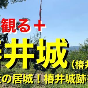 【城を観る+】《椿井城(椿井山城)》2021 〜嶋左近の居城!椿井城跡を観る〜