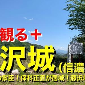城を観る《藤沢城(信濃国)》