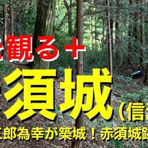 城を観る《赤須城(信濃国)》
