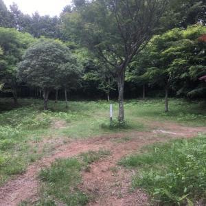 亀山城(三河国)〜二の丸〜