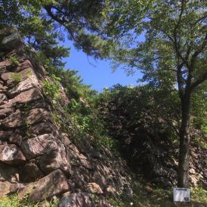 鳥羽城(志摩国)〜本丸西側の石垣〜