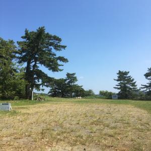 鳥羽城(志摩国)〜本丸跡〜