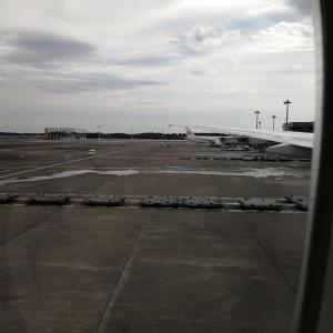 飛行機からの窓の外