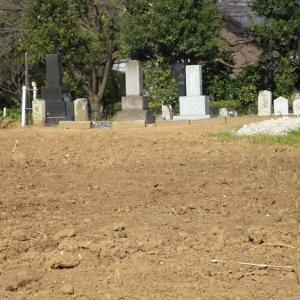 お墓のある風景
