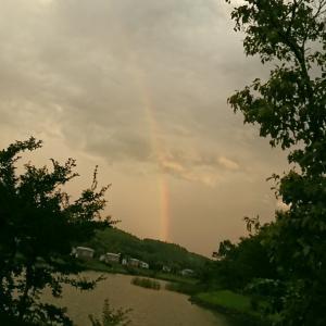 大きな虹と花…夏ですね