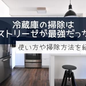 冷蔵庫の掃除はパストリーゼが最強だった!使い方や掃除方法を紹介*
