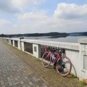 久々の有間ダム(名栗湖)までサイクリング(2020.8.3)