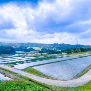 これぞ日本の原風景♪神子原の棚田と農産物直売所『神子の里』にてソフトクリーム♡
