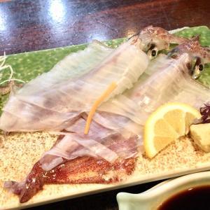 山口ひとり旅⑦透き通る美しさ✨萩にて活イカ定食を食す