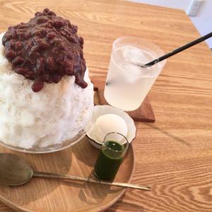 福井市「だいだい珈琲」@ふわふわミルキー♪抹茶あずきみるくかき氷