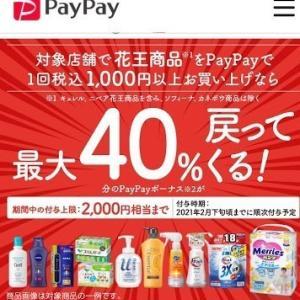 12月のPayPay×花王キャンペーンのポイント還元