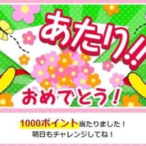 dポイント1000ポイント当選!!
