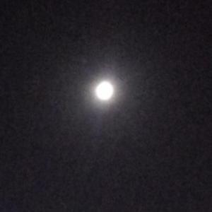 昨日7/17は満月でした