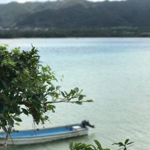 【JGC修行】ひとりで石垣島に行ってきた。都会に疲れたらこういうのもありかも。