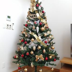 *2019年 クリスマスツリー出しました!