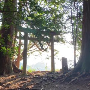映像がブレるほどエネルギーが強かった神社「奥磐戸神社」