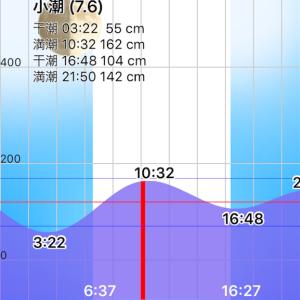 12月7日 江ノ島大堤防