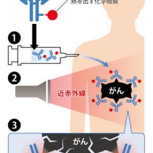 近赤外線を使った新しい免疫治療