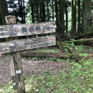 山練山活Fun Fun Trail またまた秩父へGo! ②