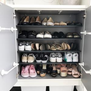 靴箱を掃除したら大変なことになってました!