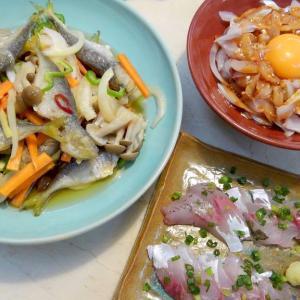 【食】タチウオのユッケ・アジの南蛮漬け・アジの刺身・ナメロウ