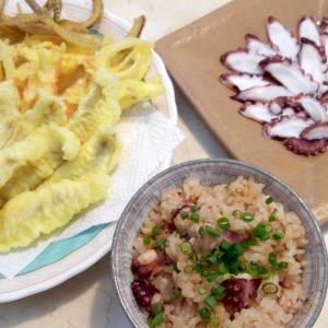【食】シロギスの天ぷら・マダコの刺身・タコ飯