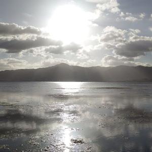 琵琶湖に行ってきました♪