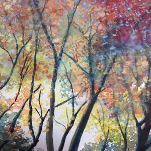 九品仏 木々の秋色