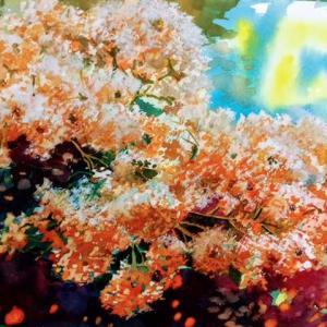 さるすべりの花 水彩画