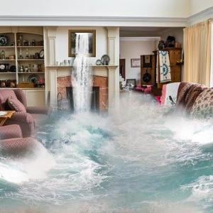 『九州豪雨被害』に想う、『所有する』という行動のリスク。