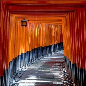 日本国の【借金体質】は、未来永劫【改善】は期待できない。