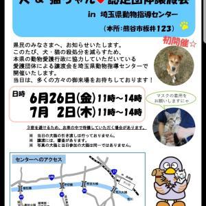 埼玉動物指導センターで初の譲渡会!