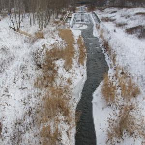 冷えた日の真駒内川