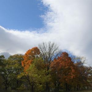 空は荒天の兆し
