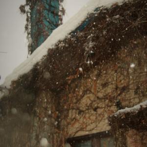 暖かい雪の日