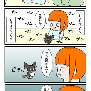 人の言葉が分かる犬