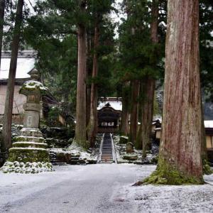 冬の北陸旅行③  ~雪の永平寺~